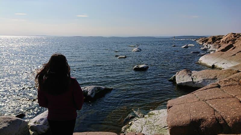 Viri blickar ut över havet utanför Skagsudde